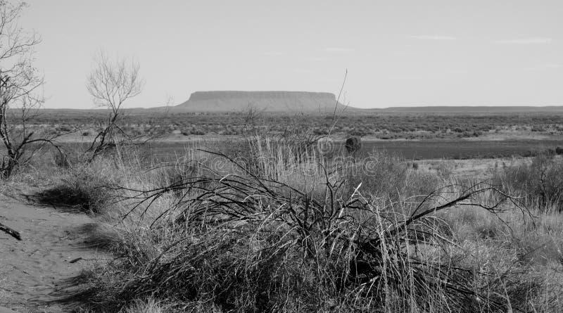 Гора Conner столешницы в захолустье стоковая фотография