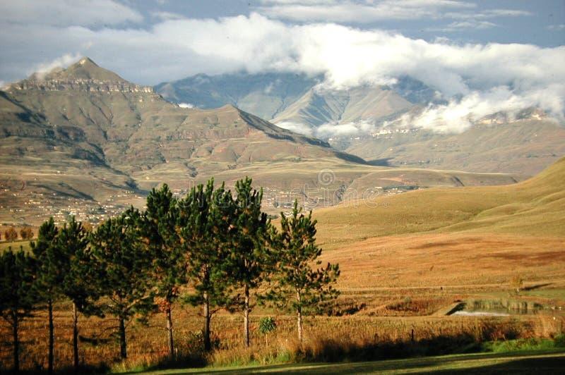 гора drakensberg стоковые фотографии rf