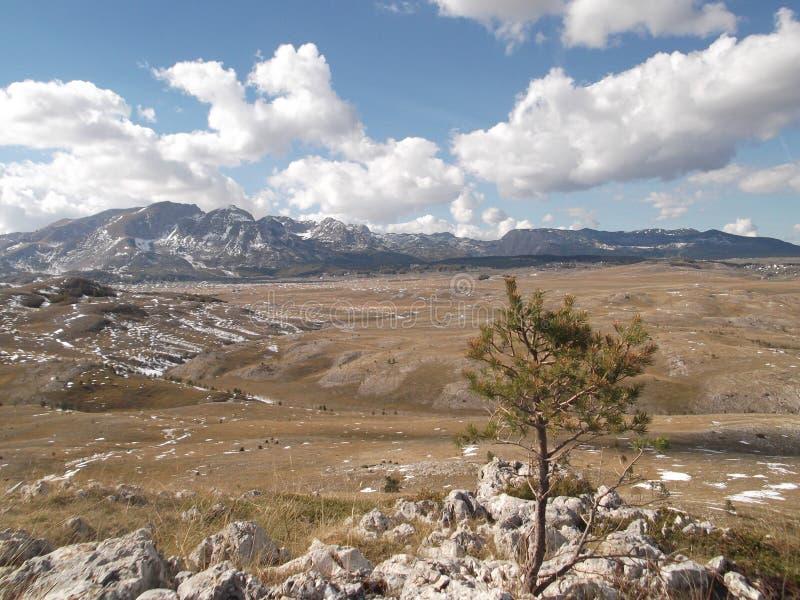 Гора Durmitor в осени стоковые изображения