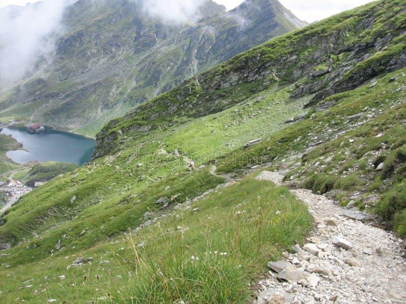 гора footpath стоковая фотография