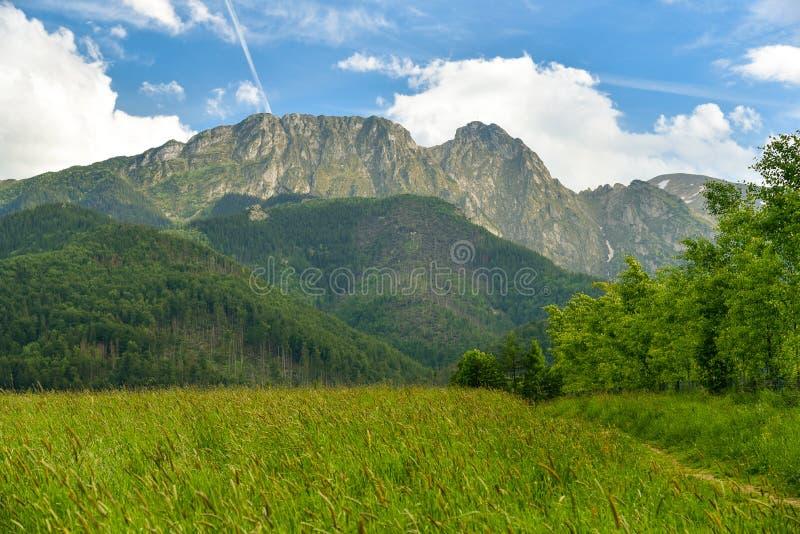 Гора Giewont, горы Tatra, Zakopane, Польша стоковая фотография rf