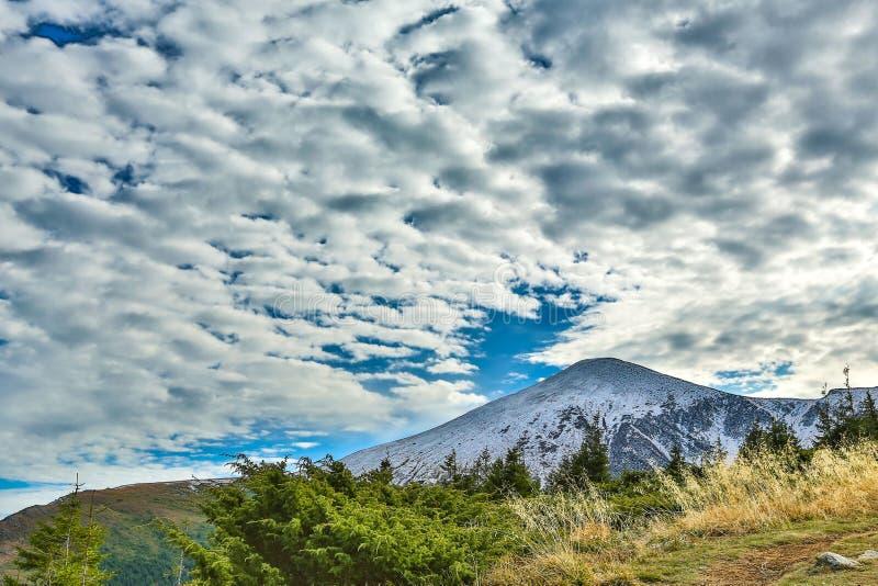 Гора Goverla в украинское прикарпатском стоковая фотография rf