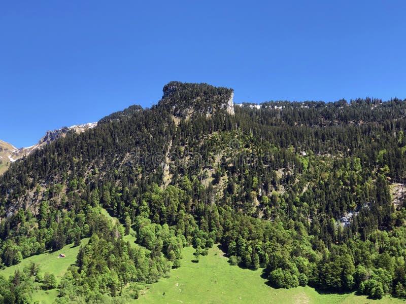 Гора Himmelchopf над долиной Wagital или Waegital и высокогорным озером Wagitalersee Waegitalersee, Innerthal стоковые фотографии rf