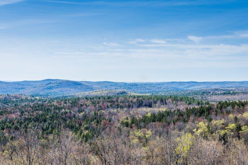 Гора Hogback сценарная обозревает в зеленом парке штата горы внутри стоковые фото