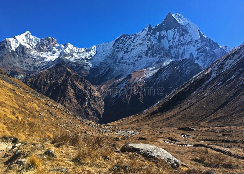 Гора Machapuchare и гребень стоковая фотография rf