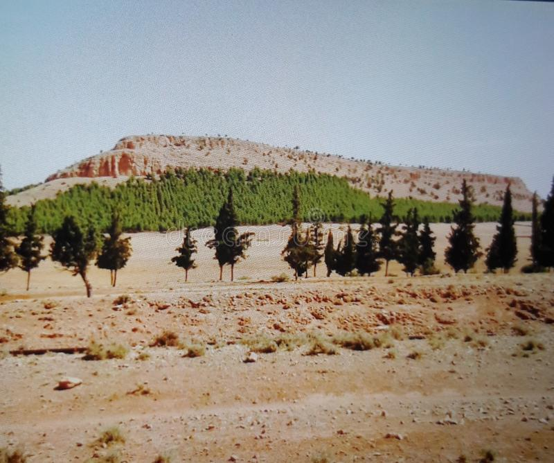 Гора Maggaz стоковое фото rf