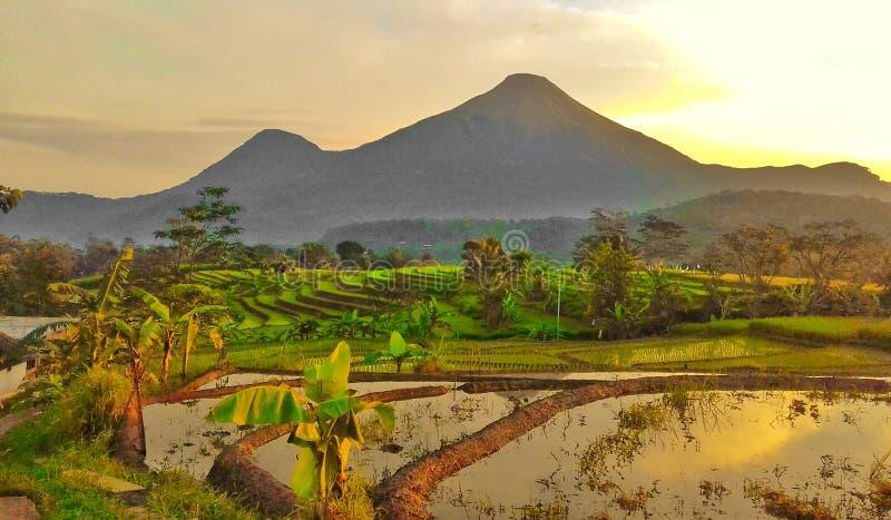 Гора Penanggungan стоковые изображения rf