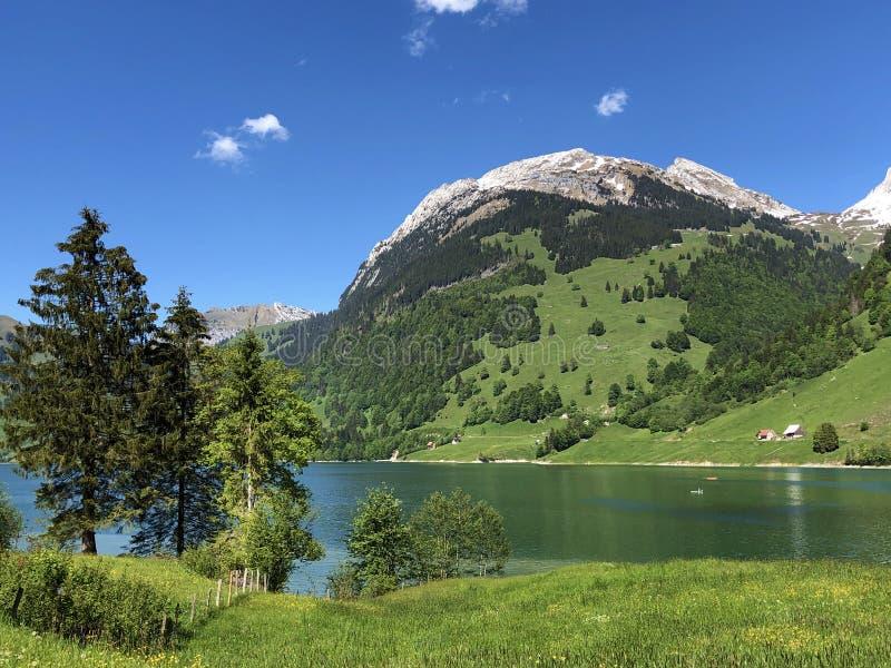 Гора Schiberg над долиной или Waegital Wagital и озеро Waegitalersee Wagitalersee высокогорное, Innerthal стоковое изображение rf