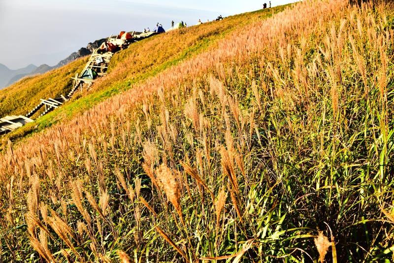 Гора Wugong стоковые изображения rf