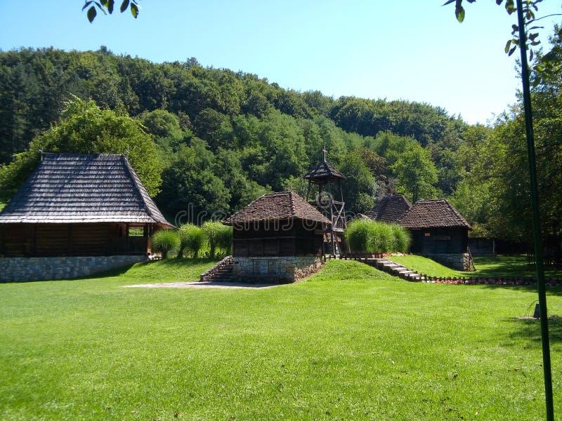 Гора Zlatibor стоковые изображения rf
