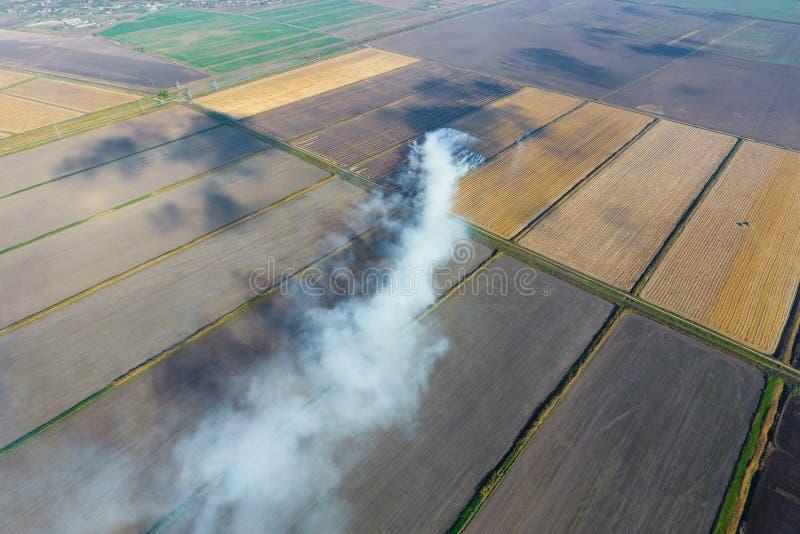 Горение соломы риса в полях Дым от горения соломы риса в проверках Огонь дальше стоковая фотография