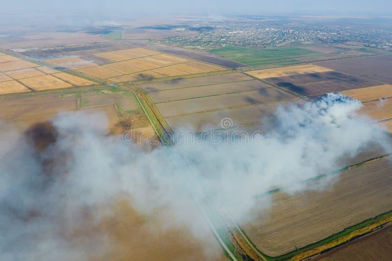 Горение соломы риса в полях Дым от горения соломы риса в проверках Огонь дальше стоковая фотография rf