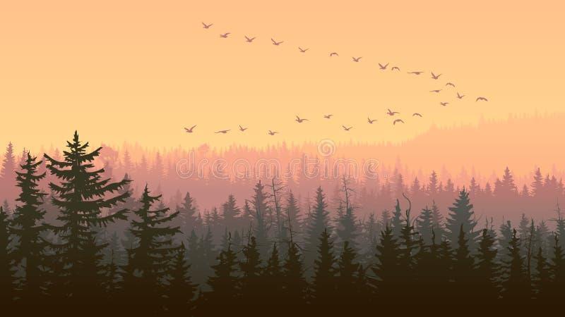 Горизонтальная иллюстрация туманного захода солнца Forest Hills бесплатная иллюстрация