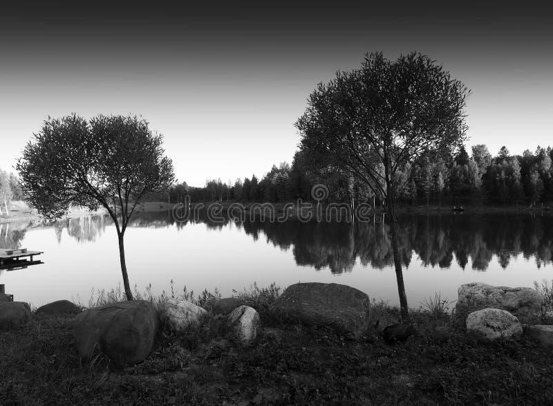 Горизонтальная предпосылка ландшафта 2 черно-белая деревьев стоковые изображения