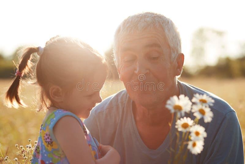Горизонтальная съемка малого grannddaughter и старшего деда, взглядов joyfully на букете camomiles, стоит против солнечности стоковое изображение rf