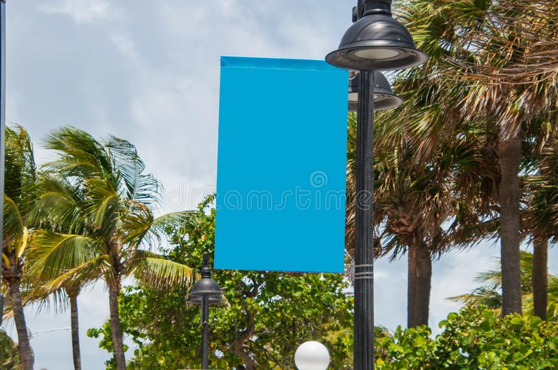 Горизонтальный взгляд пустого небесно-голубого знака прикрепленного в столб лампы с пальмами и небесами overcast на заднем плане стоковые изображения rf