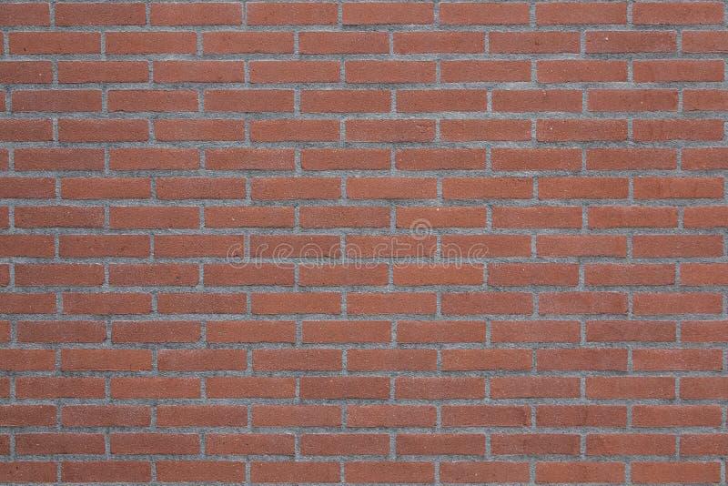 Горизонтальная часть красной кирпичной стены стоковые фотографии rf