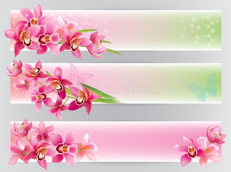 Горизонтальные знамена с орхидеями бесплатная иллюстрация
