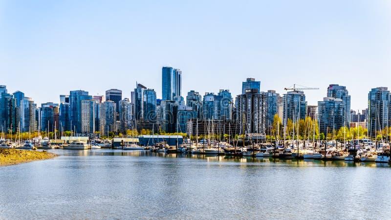Горизонт Ванкувера осмотренный с идя и велосипед пути на морской дамбе в парке Стэнли стоковое фото rf