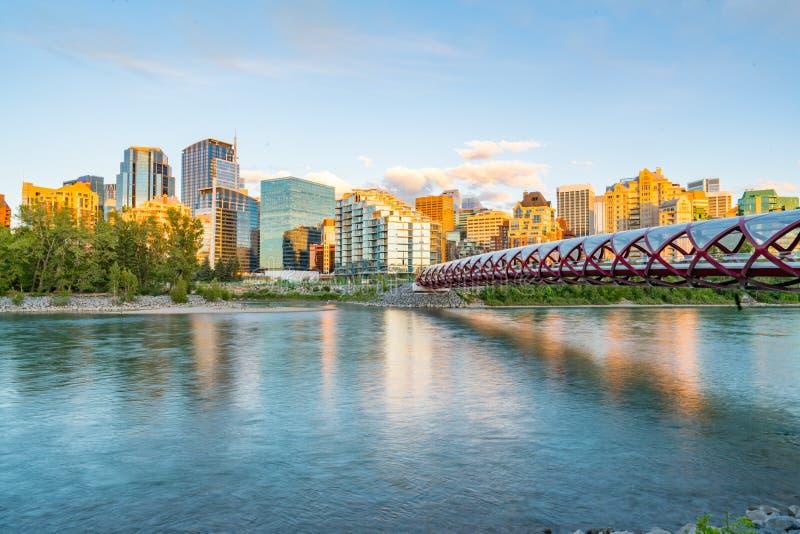 Горизонт города Калгари, Альберты и мост мира стоковые изображения rf