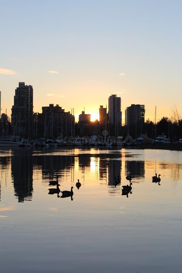 Горизонт города Ванкувера на сумраке захода солнца стоковые изображения rf