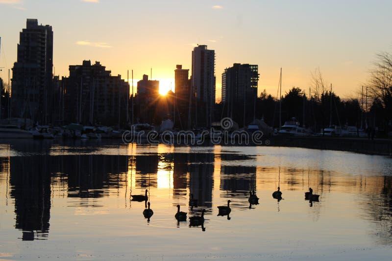 Горизонт города Ванкувера на сумраке захода солнца стоковые фотографии rf