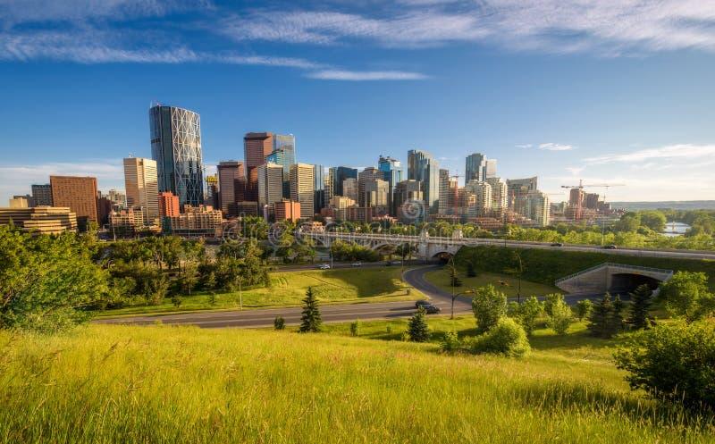 Горизонт города Калгари, Канады стоковые фотографии rf