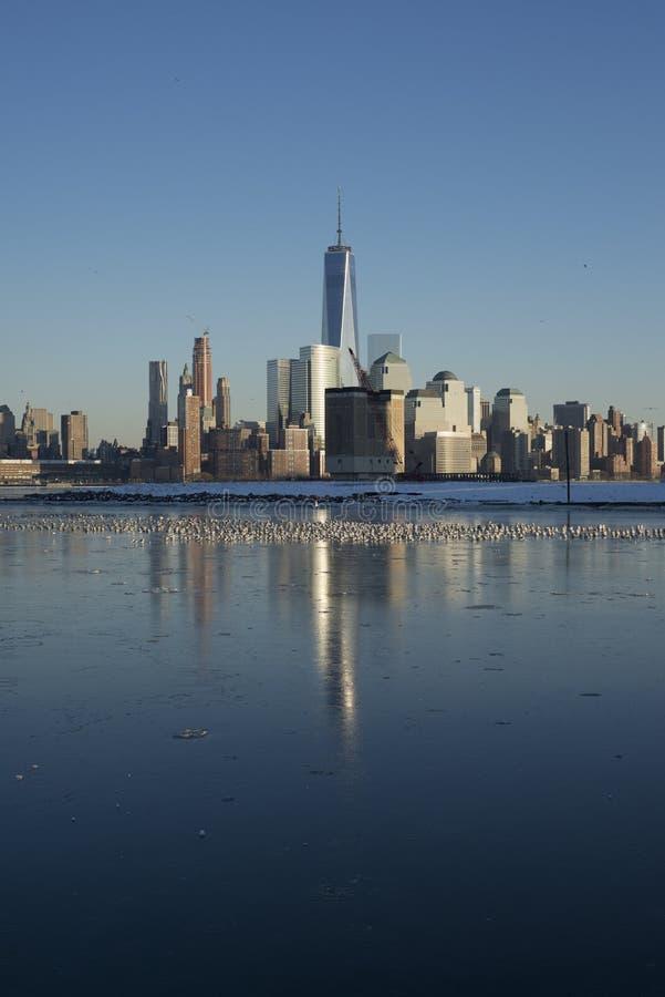 Горизонт Манхаттана зимы отраженный на льде стоковые фотографии rf