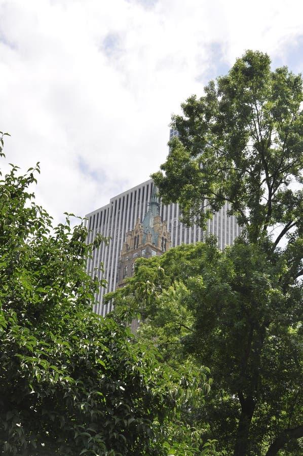 Горизонт от Central Park в центре города Манхаттане от Нью-Йорка в Соединенных Штатах стоковая фотография rf