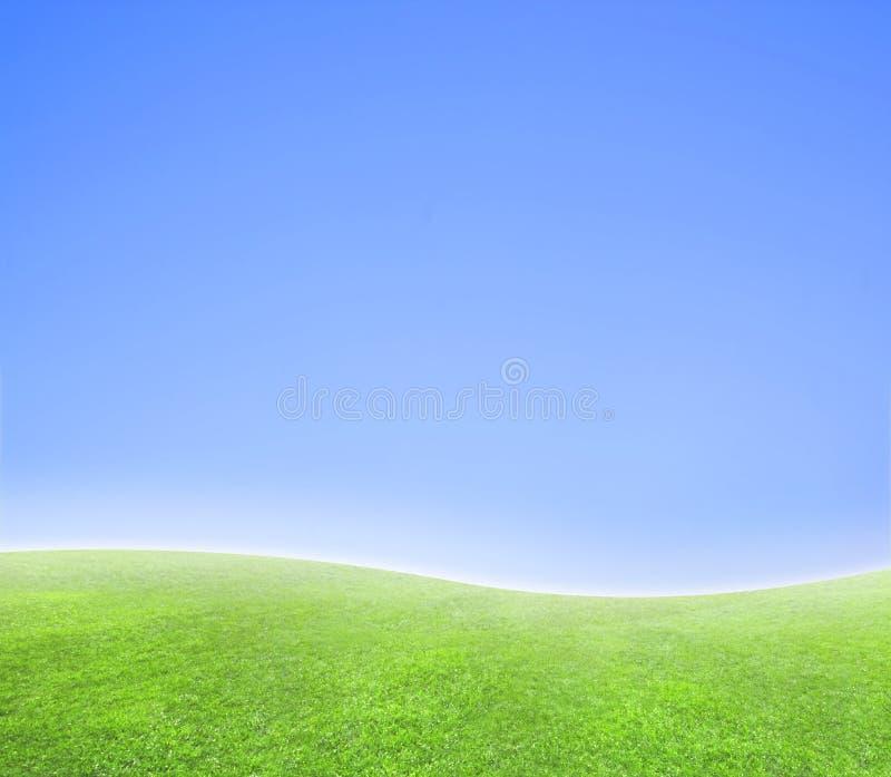 горизонт предпосылки голубой изогнутый зеленый просто стоковая фотография rf