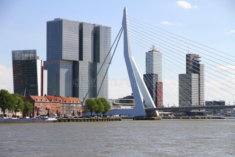 Горизонт Роттердама с мостом Erasmus стоковое изображение