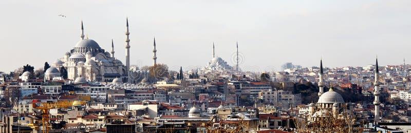 Горизонт Стамбула стоковое изображение rf