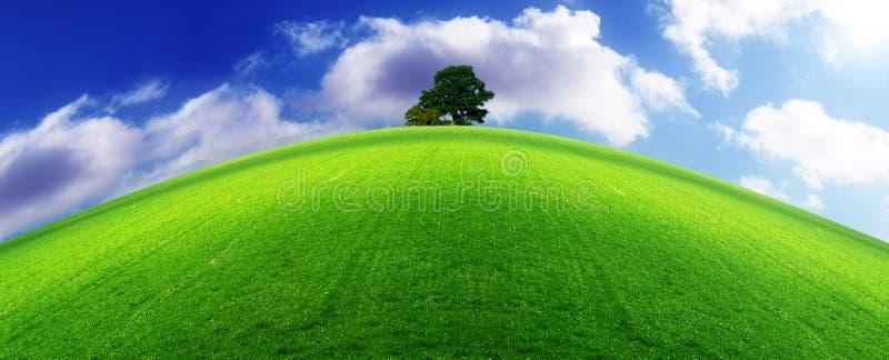 горизонт экологичности стоковое изображение rf
