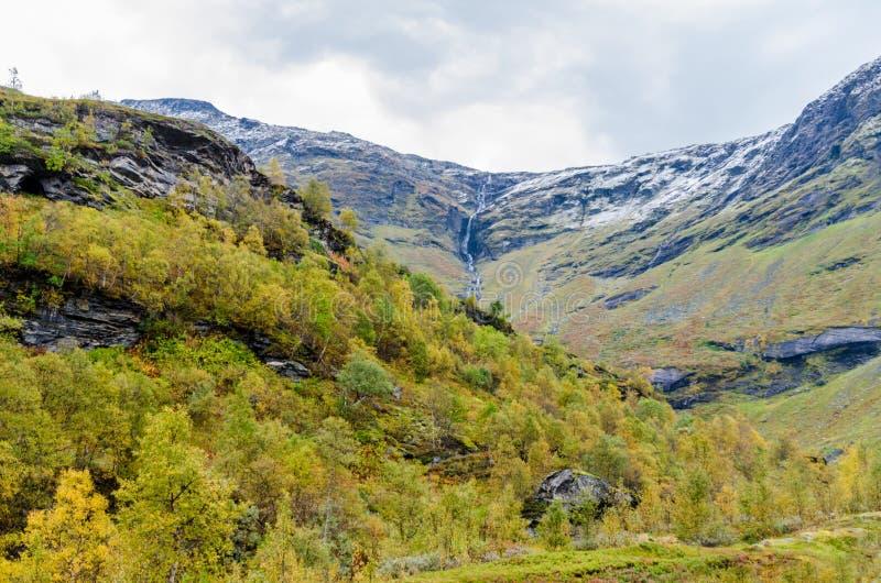 Download Гористая местность Норвегии Стоковое Изображение - изображение насчитывающей трава, сценарно: 81808215