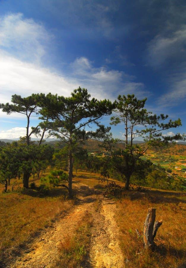 гористые местности Вьетнам dalat стоковое фото