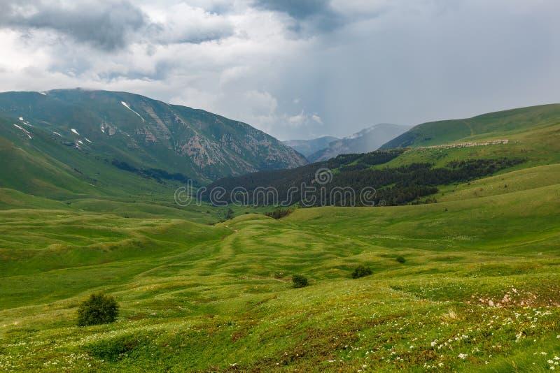 Гористые местности и зеленые луга Oshten Fisht в запасе Кавказ Кавказский запас, гора, регион Краснодар стоковая фотография rf