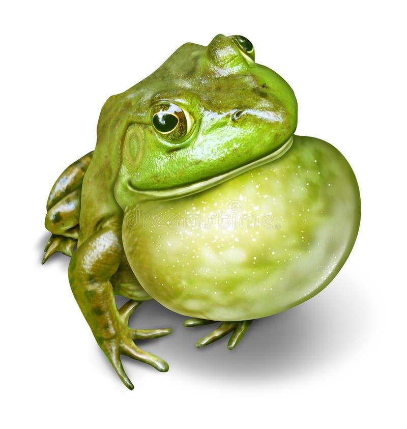 Горло надутое лягушкой иллюстрация штока