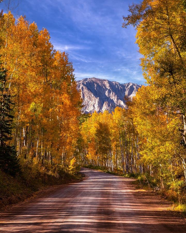 Горная дорога через Аспенские деревья стоковое изображение rf