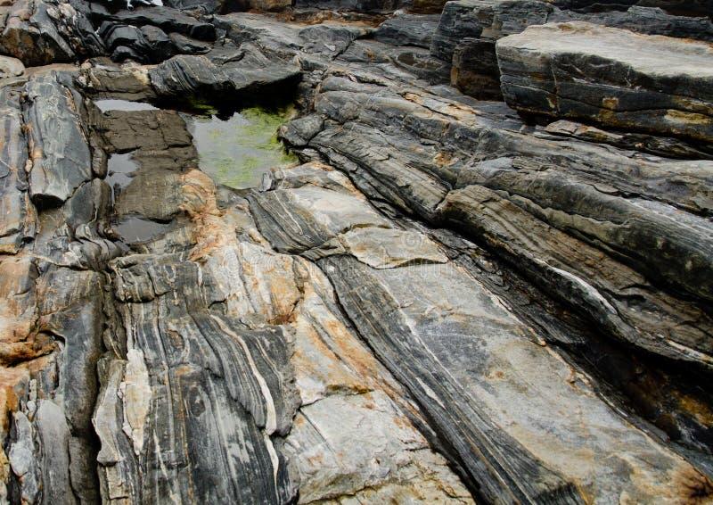 Горная порода на национальном парке Acadia, Мейне стоковое изображение rf