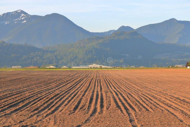 Горная цепь и аграрный край стоковое изображение rf