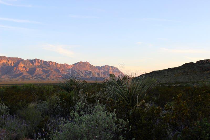 Горная цепь Chisos в большом национальном парке загиба стоковая фотография rf