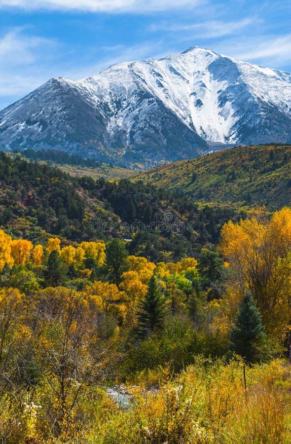 Горная цепь Gunnison County лося горы стула стоковая фотография