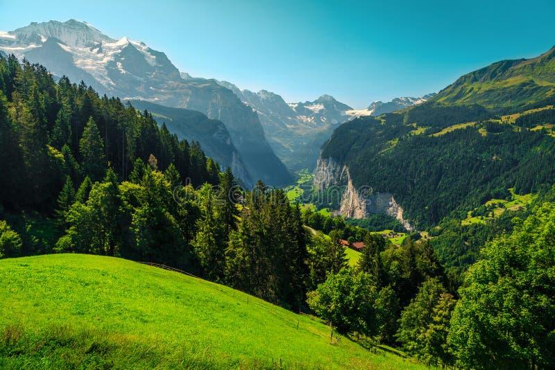 Горно-зеленые альпийские поля и снегопад вблизи Венгена, Лаутербруннен, Швейцария стоковое фото