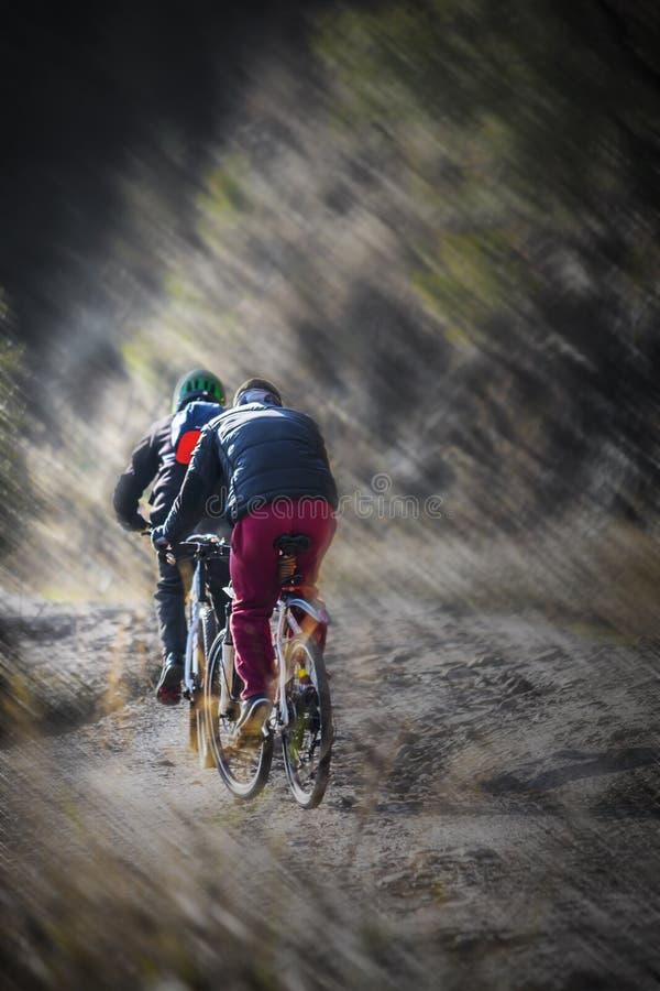 Горные велосипеды стоковая фотография rf