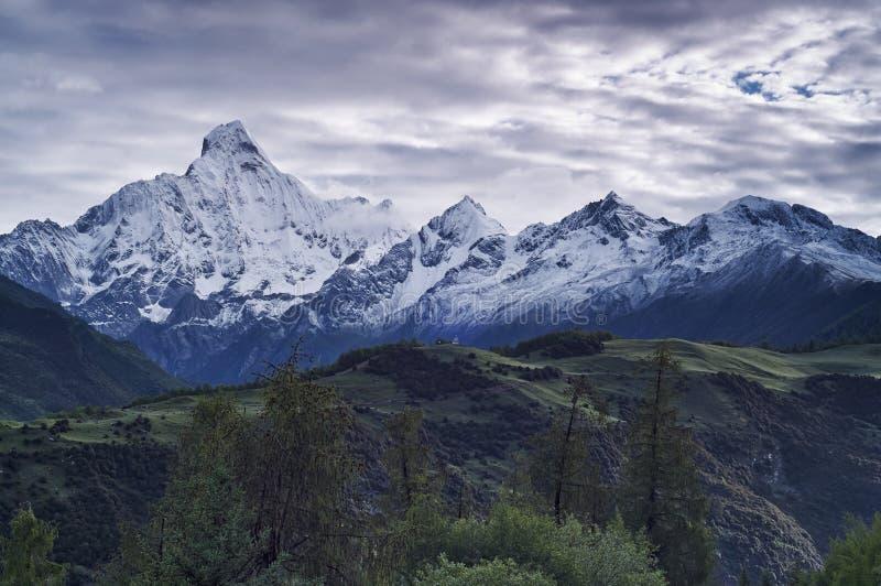 Горные пики снежка стоковые фото