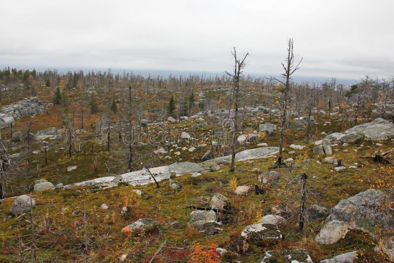 Горные склоны Vottovaara стоковые изображения