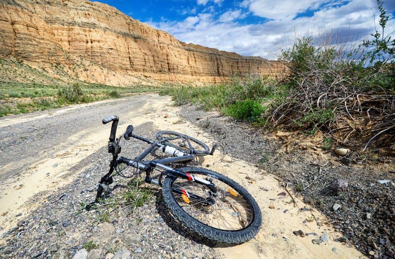 Горный велосипед в пустыне стоковые фотографии rf
