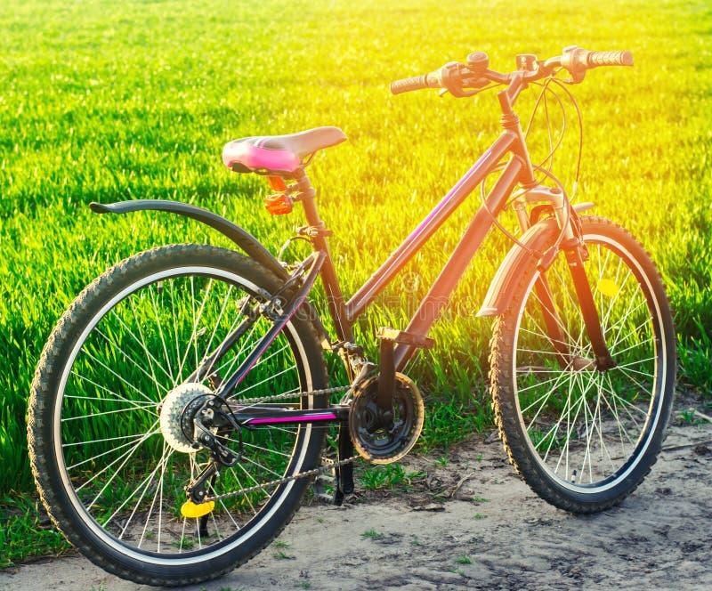 Горный велосипед, велосипед на природе, перемещении, здоровом образе жизни, прогулке страны стоковые изображения rf