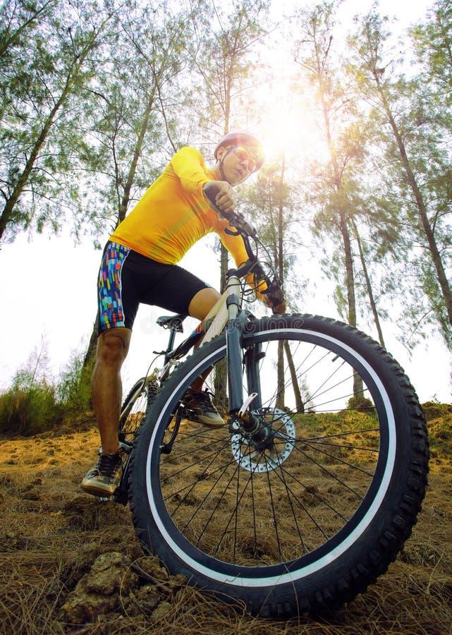 Горный велосипед катания молодого человека на естественной пользе следа для людей s стоковые изображения rf