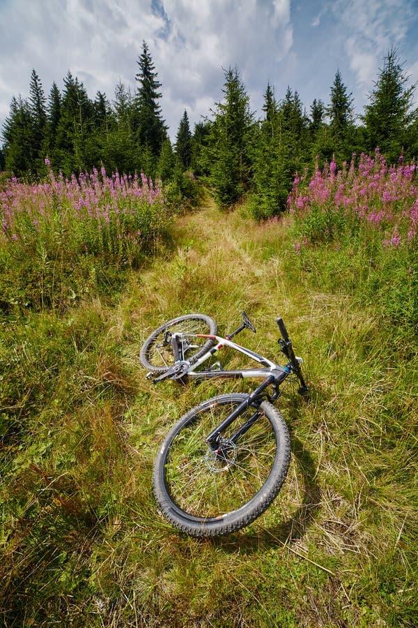 Горный велосипед отдыхая в поле около леса стоковое фото